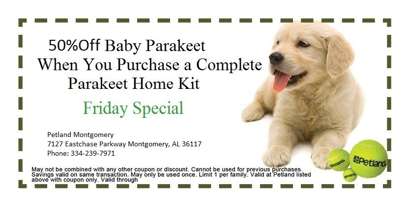 montgomery-friday-coupon-3