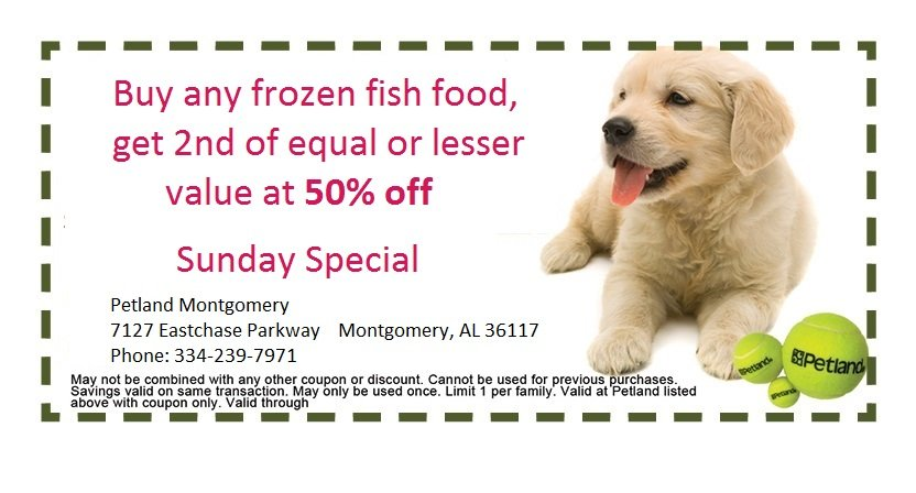 montgomery-sunday-coupon-2