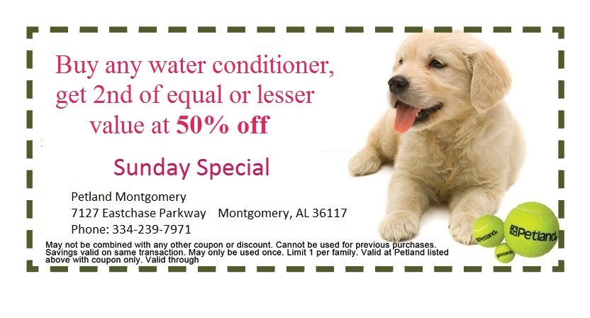 montgomery-sunday-coupon-3