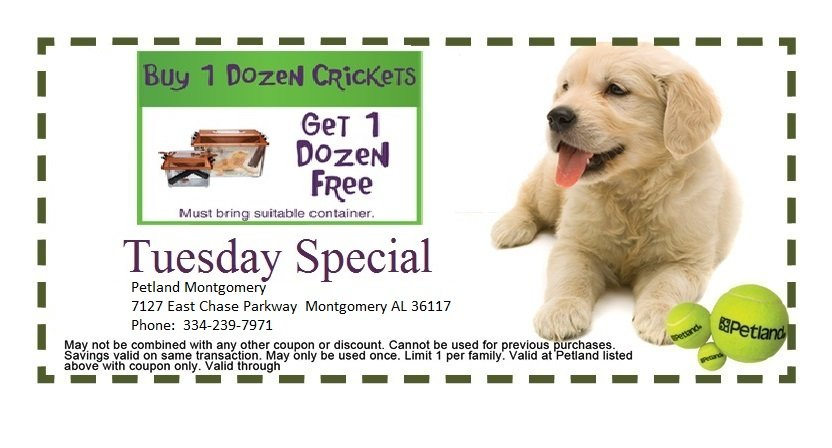 montgomery-tues-3-coupon