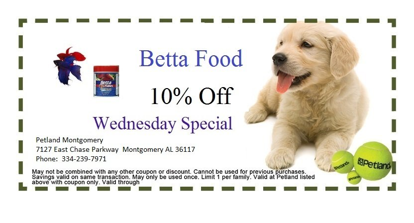 montgomery-weds-1-coupon