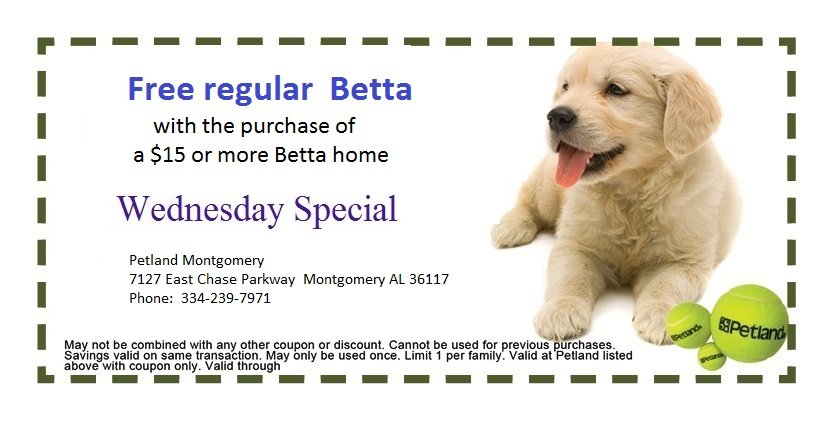 montgomery-weds-2-coupon