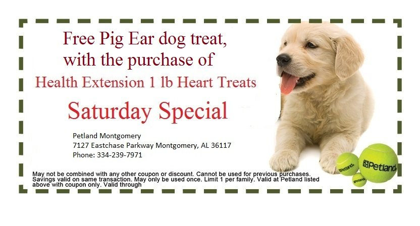 montgomery-saturday-coupon-2