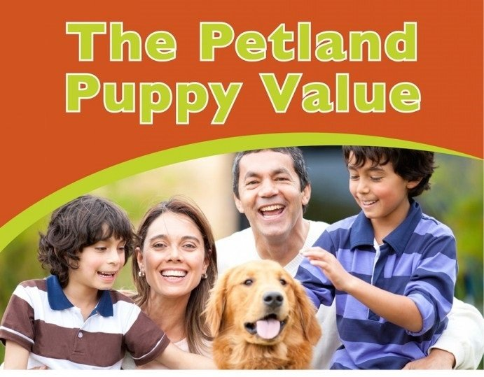 puppyvalue - petland